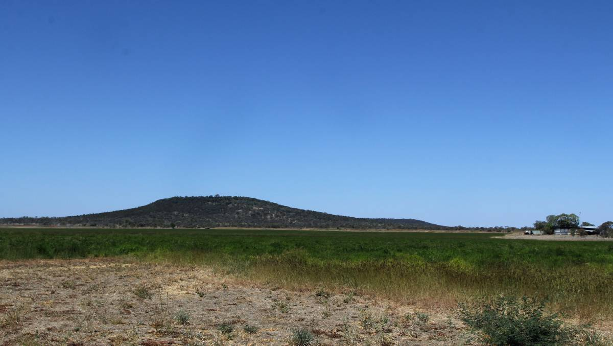 The site of the proposed Hughenden Irrigation Project.
