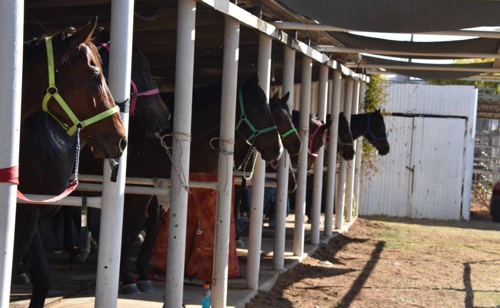 Mount Isa Race Club saw a rider suspended over the weekend.